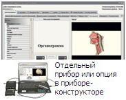 «Паркес-Д»: Органограмма, экспресс-диагностика