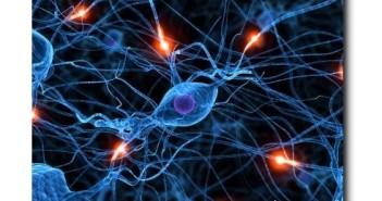 биорезонансная диагностика, Электробиология клетки,